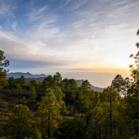 El Parque Natural de Tamabada, protagonista de la exposición del Grupo Fotográfico San Borondón