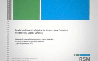 Información de Auditoría de la Fundación